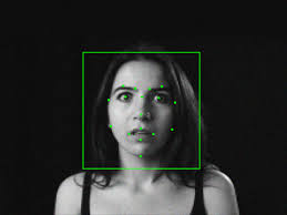 Amazon Says It Can Detect Fear On Your Face You Scared Wired