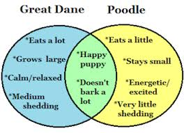 And Or Venn Diagram What Is A Venn Diagram Lesson For Kids Video Lesson