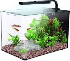 best small aquariums nano tank ers