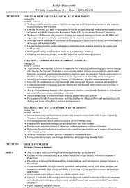 Download Strategy & Corporate Development Resume Sample as Image file