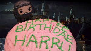 Diy Hagrids Birthday Cake From Harry Potter Youtube