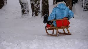 child wooden sled goes down from a snowy hill in pine forest slow motion in 180 fps happy kid moves down on a sled girl sledding down hills