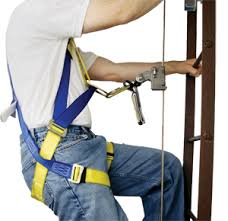 Image result for Harness ladders