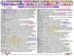 Bach Flower Remedies Chart Woofs Hoofs Animal Massage Webshop Canine Flower
