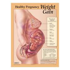 Pregnancy Weight Chart Healthy Pregnancy Weight Gain Chart Childbirth Graphics