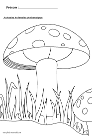 98 Best Champignons En Maternelle Images On Pinterest Fungi