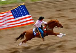 Image result for horse 4th of july