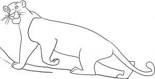i hope you found this drawing lesson on how to draw bagheera from the jungle book step by step helpful