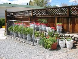 garden in a bag. Growing Potatoes In A Bag Or Bucket Garden