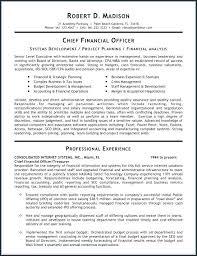 Finance Manager Resume Senior Finance Manager Resume Template ...