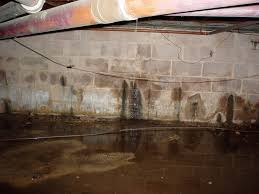 water seeping through the s in a basement wall