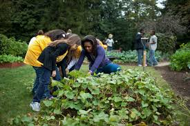 White House Kitchen Garden The First Lady At The Kitchen Garden Fall Harvest Whitehousegov
