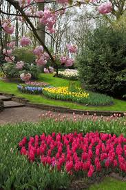 Large Flower Garden With Colorful Flowers : Starting A Beautiful Flower  Garden In Your Yard