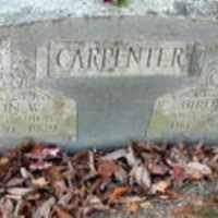 Nancy Berdine Palmer (1871-1898) • FamilySearch