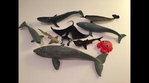 whale toys
