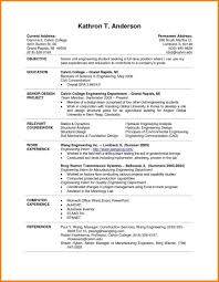 20 Beautiful Current Resume Templates For Images