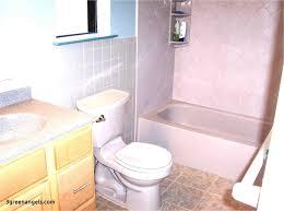 basic bathroom ideas.  Basic Absolutely Smart Decorating Lovely Rhcloudcomputingvillacom Basic  Bathroom Ideas Fabulous Small  And Basic Bathroom Ideas