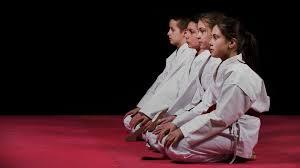 Golden fist karate newtown pa