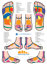 Reflexology Foot Chart Natural Remedy Reflexology Foot