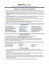 Interesting Ideas Vendor Management Resume Manager Vendor Management