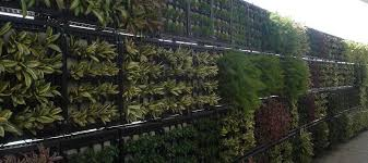 Small Picture Green Walls in India Vertical Gardens Vertical Gardening in