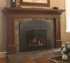 archgard fireplace inserts photos