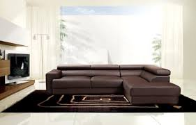 beautiful brown leather sectional sofa and modern black living room area rug plus white floor lamp