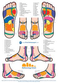 Human Body Pressure Points Chart Reflexology Foot