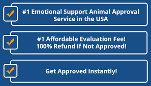Emotional Support Animal Certification