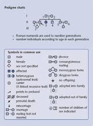 Pedigree Chart Symbols Acrosspg Blog