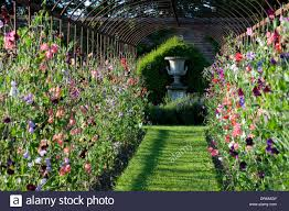 helmingham hall suffolk design xa tollemache english garden formal clic style colour color metal hoop tunnel plant support