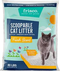 image cat litter. Brilliant Image Video In Image Cat Litter Chewycom