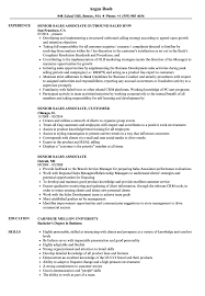 Resume For Sales Associate Senior Sales Associate Resume Samples Velvet Jobs 33