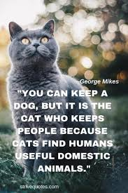 20 Funny Cat Quotes Sayings Images Cat Quotes Cat Quotes
