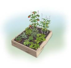 this easy plan shows you how to plant a 4 x 4 summer garden