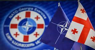 Bildergebnis für НАТО  Грузия с Россией