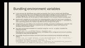 bundling environment variables