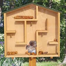 woodworking projects for kids bird house. a \ woodworking projects for kids bird house