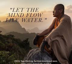 Water Quotes Fascinating Quote Of The Day Let The Mind Flow Like Water