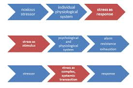 stress and coping introduction to psychology st canadian  stress can be a response a stimulus and a transaction