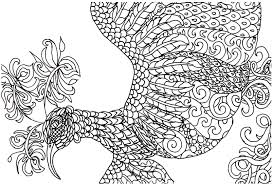 Detailed Bird Coloring Pages