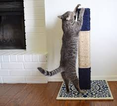 bought cat scratching posts see how to make your own that will honestly