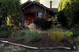 cathcart the oregonianreporter kimberly wilson s garden in portland s cully neighborhood dusk casts a final shaft of light on a honeyle bush on the
