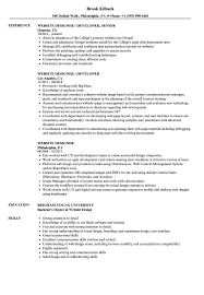 Website Designer Resume Samples Velvet Jobs