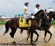2010 Kentucky Derby Chart 2010 Kentucky Derby Field