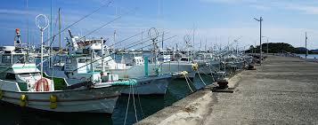 和歌山県漁業協同組合連合会|漁協の指導・購買・販売を実施|JF和歌山漁連