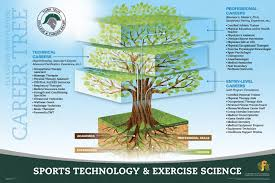 Careers With Exercise Science Degree Sports Technology Exercise Science York County School Of