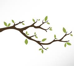 tree branch with leaves vector. pin branch clipart tree leaf #3 with leaves vector a