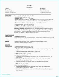 Minimalist Resume Template Best Sample Email For Job Request Cfo