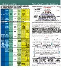 Ph Balance Food Chart Alkaline Body Balance Informational Booklet With Food Chart And Ph Test Strip Condensed Version